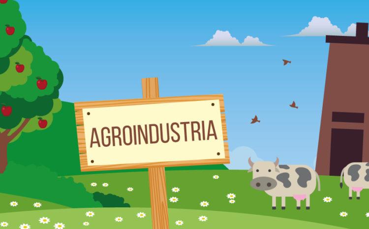 Trasformazione, commercializzazione e sviluppo dei prodotti agricoli nelle aziende agroindustriali